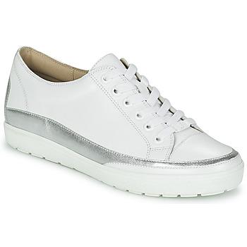 Cipők Női Rövid szárú edzőcipők Caprice BUSCETI Fehér / Ezüst
