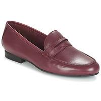 Cipők Női Mokkaszínek André TIM Bordó