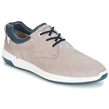Cipők Férfi Rövid szárú edzőcipők Lloyd ACHILLES Bézs