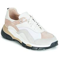 Cipők Női Rövid szárú edzőcipők Tosca Blu KELLY Fehér / Bézs