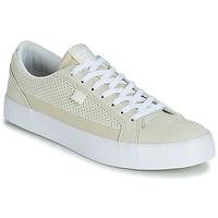 Cipők Férfi Rövid szárú edzőcipők DC Shoes LYNNFIELD SE M SHOE SFW Fehér