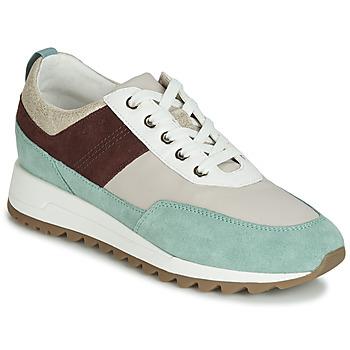 Cipők Női Rövid szárú edzőcipők Geox D TABELYA Bézs / Barna / Zöld