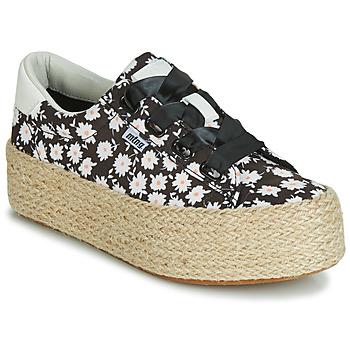 Cipők Női Rövid szárú edzőcipők MTNG WANDA Fehér / Fekete