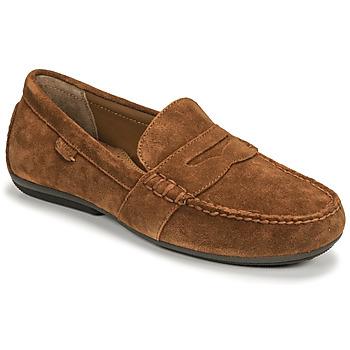 Cipők Férfi Mokkaszínek Polo Ralph Lauren REYNOLD Gesztenyebarna