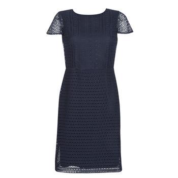 Ruhák Női Rövid ruhák Lauren Ralph Lauren NAVY SHORT SLEEVE DAY DRESS Tengerész