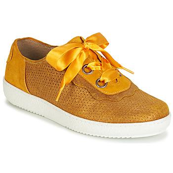 Cipők Női Rövid szárú edzőcipők Casta HUMANA Citromsárga / Arany
