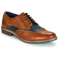 Cipők Férfi Oxford cipők Bugatti TROISCINQ Konyak / Kék
