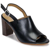 Cipők Női Szandálok / Saruk Betty London JIKOTEGE Fekete