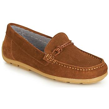 Cipők Lány Oxford cipők André GASPARD Barna