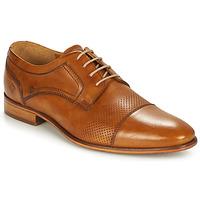 Cipők Férfi Oxford cipők André LIVING Barna