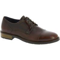 Cipők Férfi Oxford cipők Raymont 625 BROWN marrone