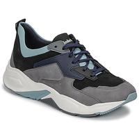 Cipők Női Rövid szárú edzőcipők Timberland DELPHIVILLE LEATHER SNEAK Fekete