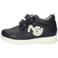 Cipők Fiú Rövid szárú edzőcipők Nero Giardini P724220M Blue