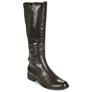 Cipők Női Városi csizmák Gabor 3164228 Barna