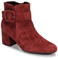 Cipők Női Bokacsizmák Gabor 3581610 Piros
