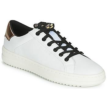 Cipők Női Rövid szárú edzőcipők Geox D PONTOISE Fehér / Rezes