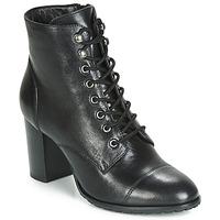 Cipők Női Bokacsizmák Ravel MARCO Fekete
