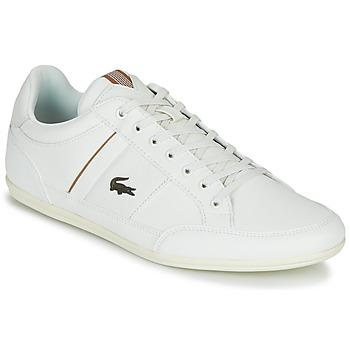 Cipők Férfi Rövid szárú edzőcipők Lacoste CHAYMON 319 1 Fehér