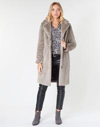 Ruhák Női Kabátok Oakwood CYBER Sötét / Bézs