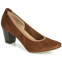Cipők Női Félcipők Perlato 10362-CAM-COGNAC Konyak