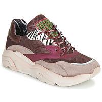 Cipők Női Rövid szárú edzőcipők Meline JOLI Rózsaszín / Bézs