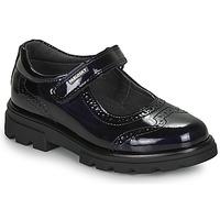 Cipők Lány Balerina cipők / babák Pablosky 335829 Tengerész