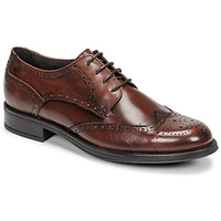 Cipők Férfi Oxford cipők Carlington LOUVIAN Barna