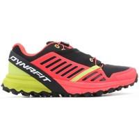 Cipők Női Rövid szárú edzőcipők Dynafit Alpine Pro W
