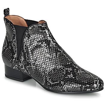 Cipők Női Csizmák André VERVEINE Szürke