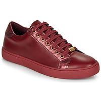 Cipők Női Rövid szárú edzőcipők André BERKELEY Bordó