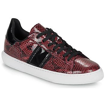Cipők Női Rövid szárú edzőcipők André FRISBEE Bordó