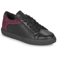 Cipők Női Rövid szárú edzőcipők André BAILA Fekete