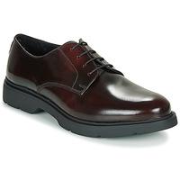 Cipők Férfi Oxford cipők André CHAD Bordó