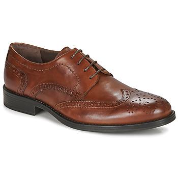 Cipők Férfi Oxford cipők André NORY Barna