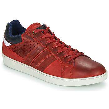 Cipők Férfi Rövid szárú edzőcipők André SNEAKSHOES Piros
