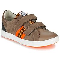 Cipők Fiú Rövid szárú edzőcipők GBB AVEDON Barna