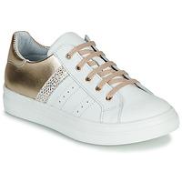 Cipők Lány Rövid szárú edzőcipők GBB DANINA Fehér / Arany