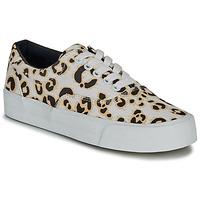 Cipők Női Rövid szárú edzőcipők Superdry CLASSIC LACE UP TRAINER Leopárd