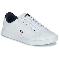 Cipők Női Rövid szárú edzőcipők Lacoste CARNABY EVO TRI 1 SFA Fehér / Tengerész / Piros