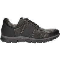 Cipők Férfi Rövid szárú edzőcipők NeroGiardini A800482U Black