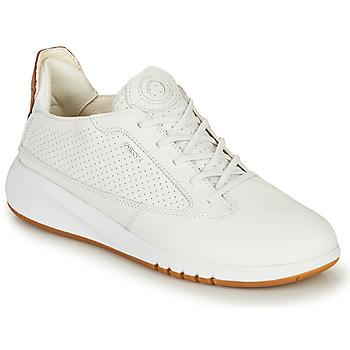 Cipők Női Rövid szárú edzőcipők Geox D AERANTIS Fehér