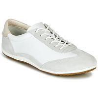 Cipők Női Rövid szárú edzőcipők Geox D VEGA Fehér / Szürke
