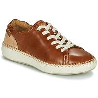 Cipők Női Rövid szárú edzőcipők Pikolinos MESINA W6B Barna / Bézs