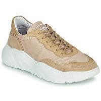 Cipők Női Rövid szárú edzőcipők Jim Rickey WINNER Cserszínű