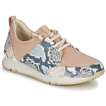 Cipők Női Rövid szárú edzőcipők Hispanitas KIOTO Bézs / Kék