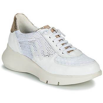 Cipők Női Rövid szárú edzőcipők Hispanitas CUZCO Fehér / Arany / Rózsaszín