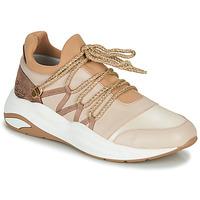 Cipők Női Rövid szárú edzőcipők Pataugas FRANCESCA Teve