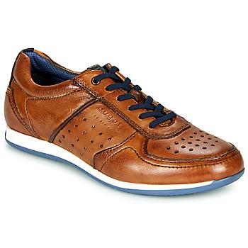 Cipők Férfi Rövid szárú edzőcipők Bugatti TOMEO Barna