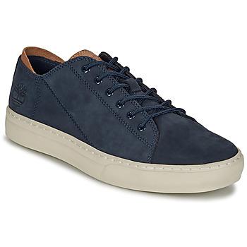 Cipők Férfi Rövid szárú edzőcipők Timberland ADV 2.0 CUPSOLE MODERN OX Kék