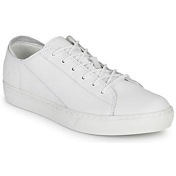 Cipők Férfi Rövid szárú edzőcipők Timberland ADV 2.0 CUPSOLE MODERN OX Fehér